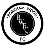 Boreham Wood shield