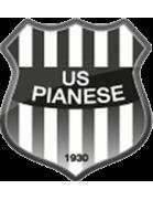 Palmese shield
