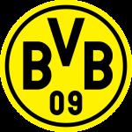 Borussia Dortmund II shield