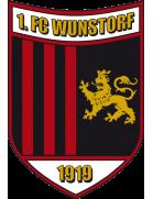 Wunstorf shield