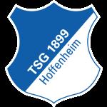 Hoffenheim II shield