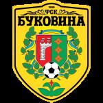 Bukovyna shield